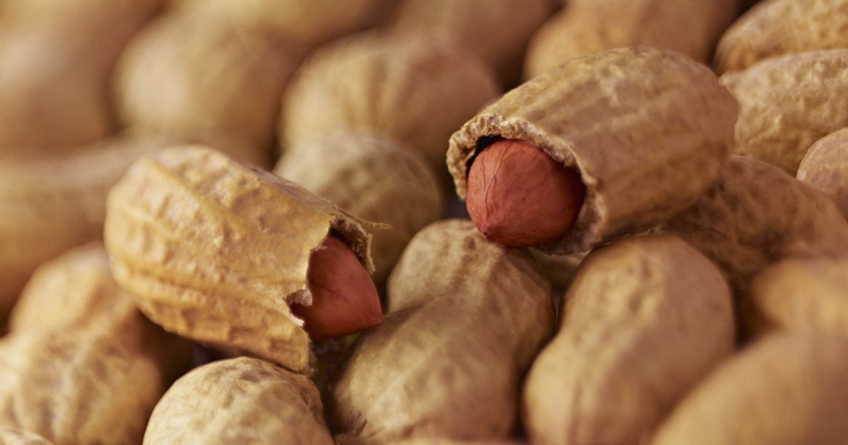 Can Eating Too Many Nuts Make You Fat? | LIVESTRONG.COM