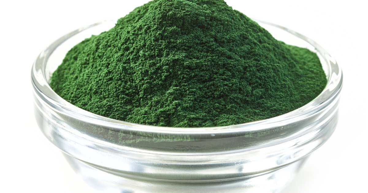 poduction and processing of spirullina Spirulina cultivation processing extracting technology for production of 30 tons per annum for the production of spirulina algae is available in india and has.