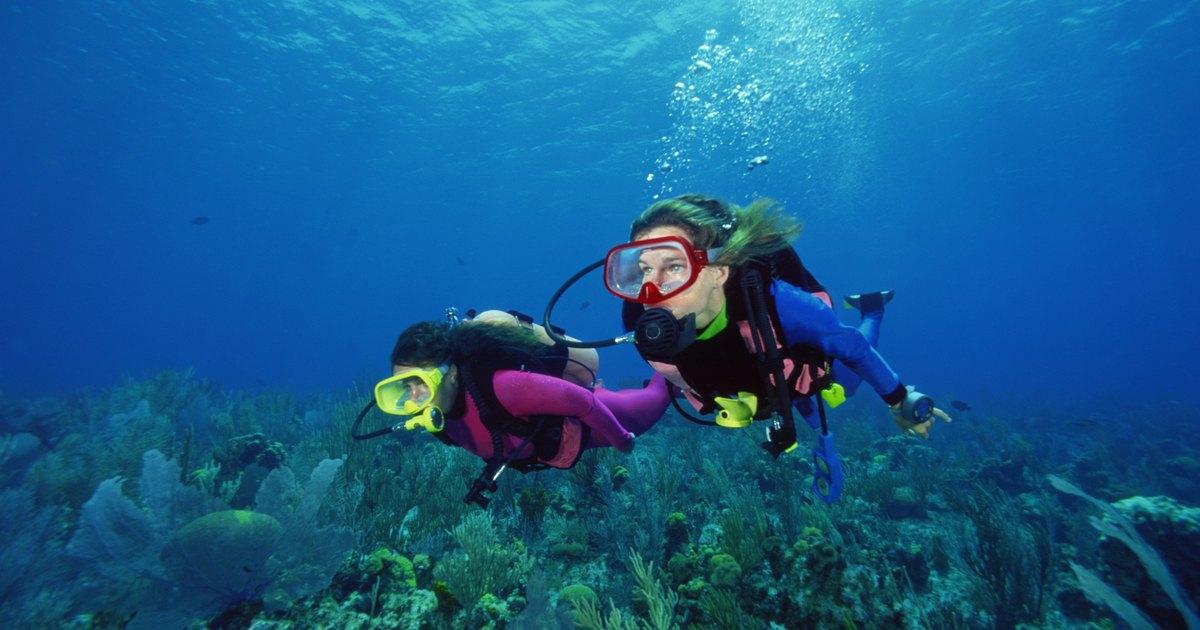 The Best Cold Water Scuba Diving Regulators Livestrong Com