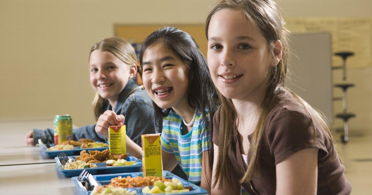 childhood obesity in school essay