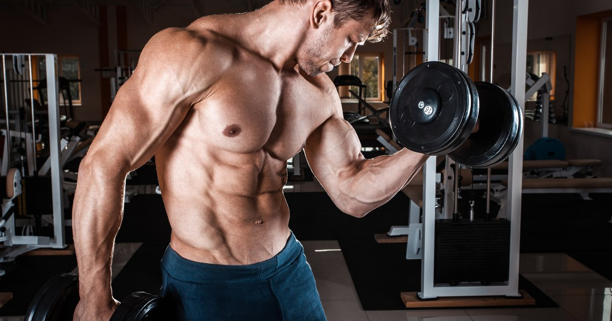 Can You Build Muscle on a Low-Carb Diet? LIVESTRONG.COM
