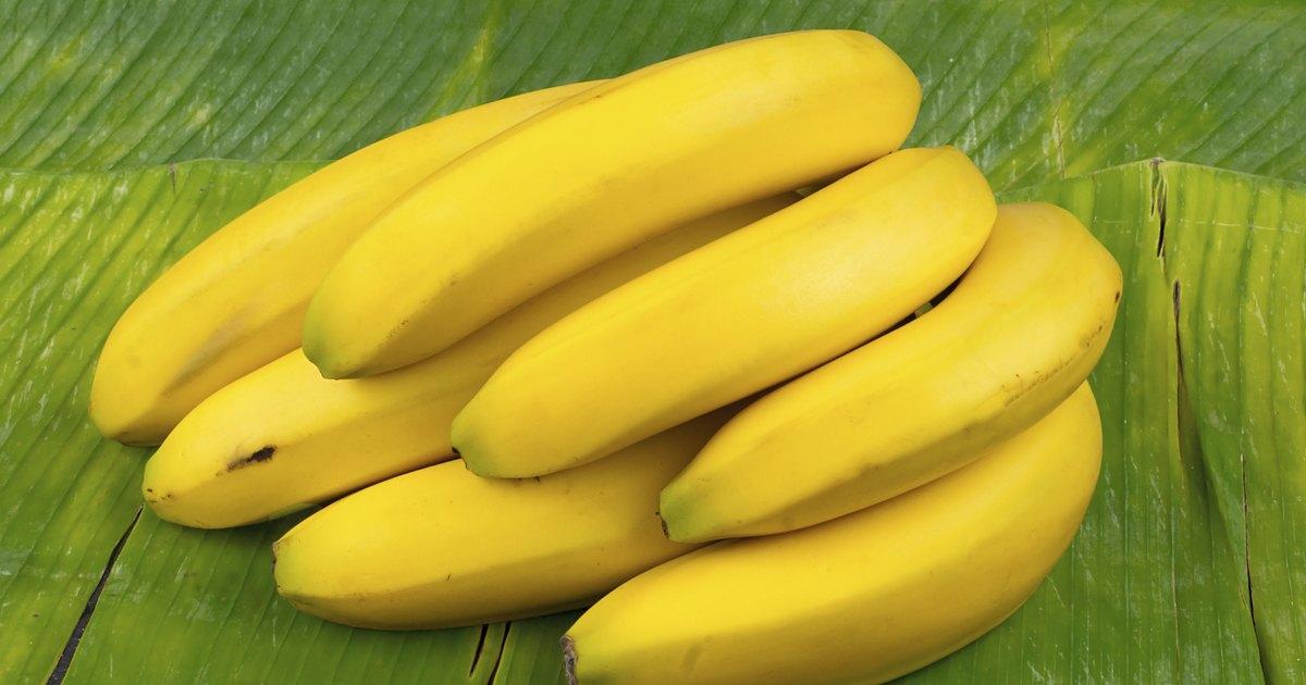 Undomesticated Banana : trypophobia