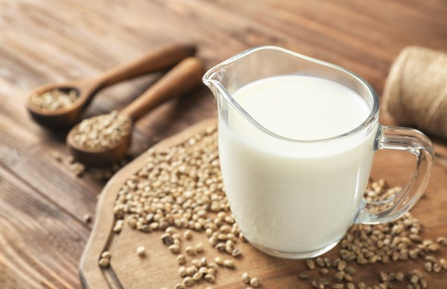 Healthy Hemp Milk