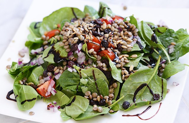 Lentil Raisin Spinach Salad
