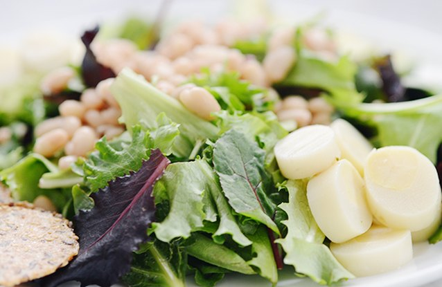 White Bean and Avocado Salad