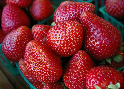 Strawberries are an excellent source of flavanoids.