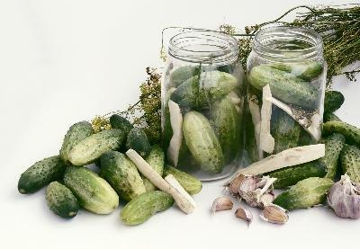 Pickling cucumbers are shorter and squatter than the other varieties of cucumbers.
