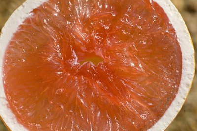 Grapefruit seed extract can be used conventionally or bought commercially in the form of a pill or cream.