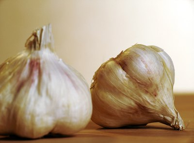 Signs & Symptoms of Garlic Allergy