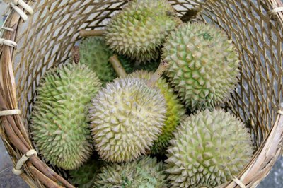 The Nutritional Content of Durian