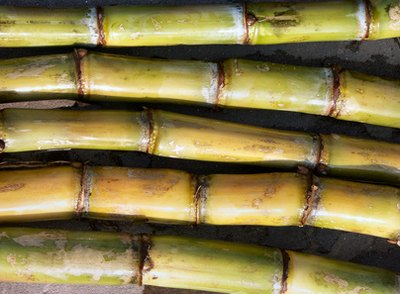Slow boiling extracts the sugar from the sugar cane.