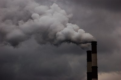 Environmental pollution encourages toxic buildup in your body.