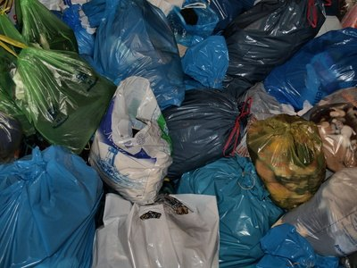 Environmental Problems With Plastic Bags