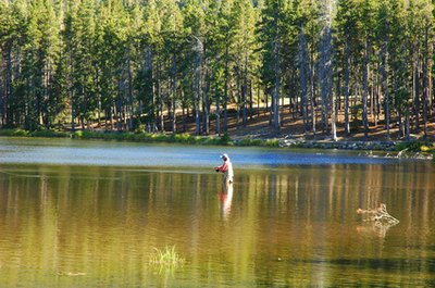 Rods & Reels Recommended for Steelhead Fishing
