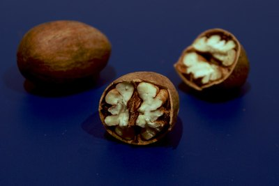 Eat plenty of nuts for brain and circulatory health.