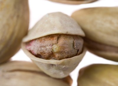 Fat Content in Pistachio Nuts
