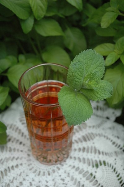 Mint Decreased Dizziness