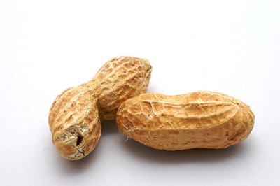 Peanuts are legumes, thus they are vegetables -- not nuts.