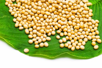 Benefits and Dangers of Eating Soy