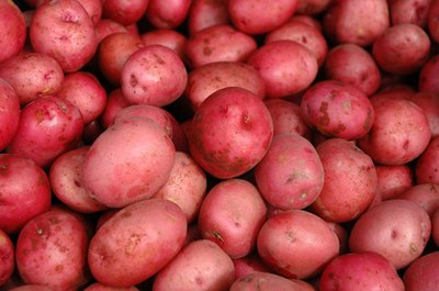 Can You Live Off Potatoes?