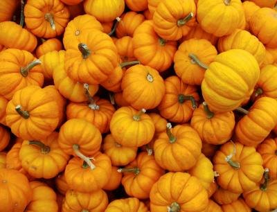 Pumpkins are also high in potassium.