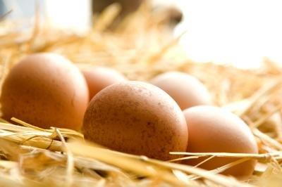 Foods To Eat To Reduce Melanin