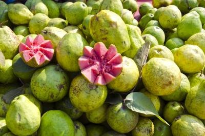 What Are the Benefits of Guava?