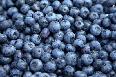Blueberries only contain a moderate level of oxalates.