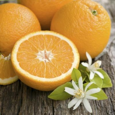 Best Foods To Eat For Stomach Virus