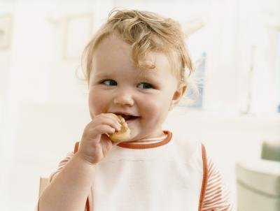 High Protein Foods for Babies