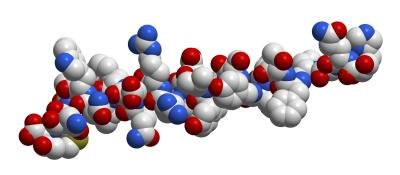 3D molecular structure of glycogen.