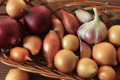 Garlic and onion may cause burning and pain.