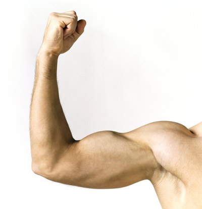 Men have more testosterone, which explains why they develop bigger muscles than women.