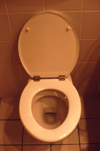 Does a Bowel Movement Sink or Float with a High Fat Diet?