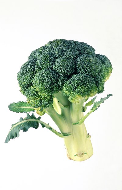 Broccoli & High Calcium Foods