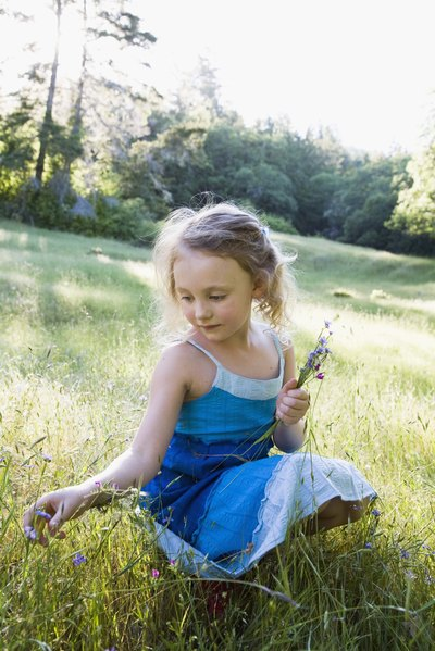 Fun Things to Do With Kids on a Sunny Day