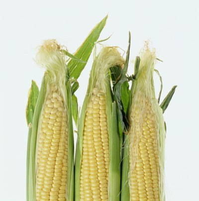 Does Eating Corn Increase Belly Fat?