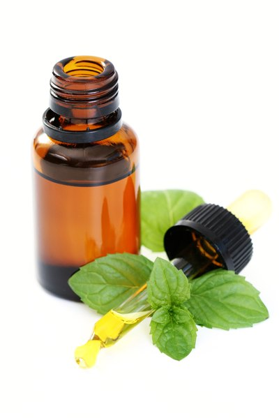 Basil vs. Peppermint Oil for Hair Growth