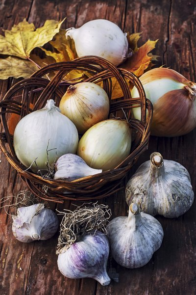 Basket of garlic and onions.