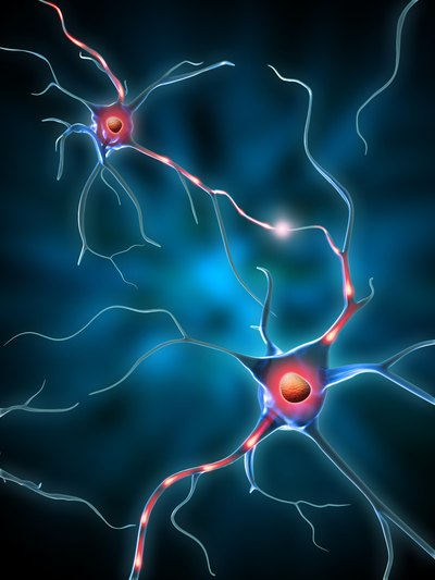 What Is a Dopamine Marker?