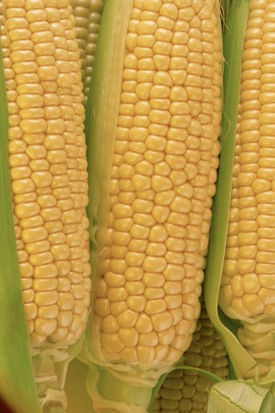 Whole Kernel Corn Nutritional Information