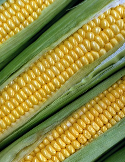 How to Freeze Corn on the Cob Without It Getting Mushy