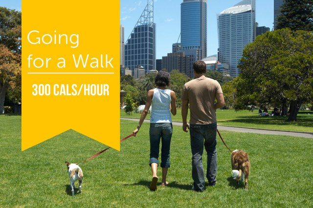 Even a leisurely stroll in the park with your pooch burns calories.