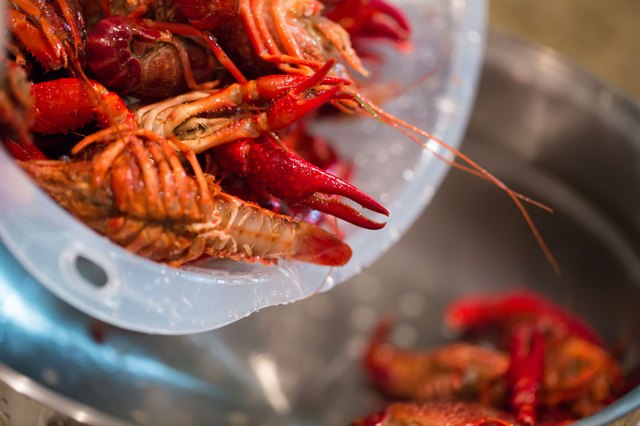 How to cook already cooked crawfish livestrong place the crawfish in a steaming basket and set them on the pot add enough water to create steam the water should not be enough to touch the basket ccuart Images