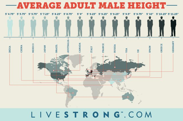 Infographic comparing average adult male height around the world.