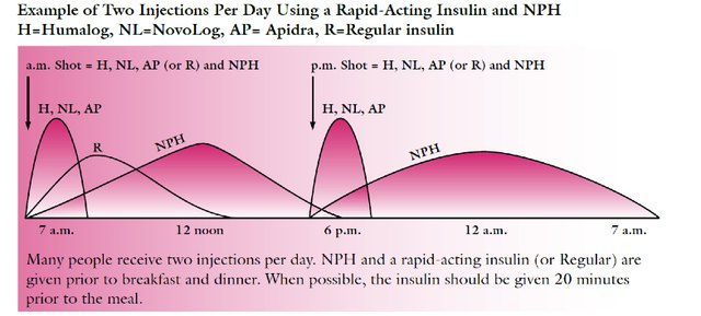 Figure 2: Use of Two Injections of NPH Intermediate-Lasting Insulin Per Day
