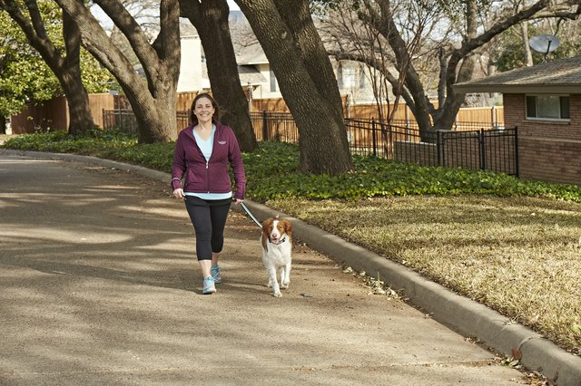 LoriJean's favorite activity is walking with her dog.