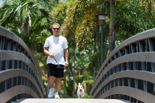 Evan and Nola out for a daily walk.