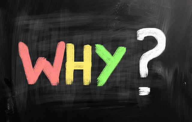 "Asking ""why?"" throughout the day can up your curiosity."