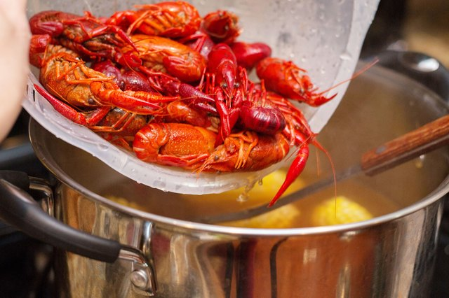 How to cook frozen whole crawfish livestrong cook until the potatoes pierce easily with a fork about 10 to 15 minutes add the frozen crawfish to the pot and cover ccuart Images